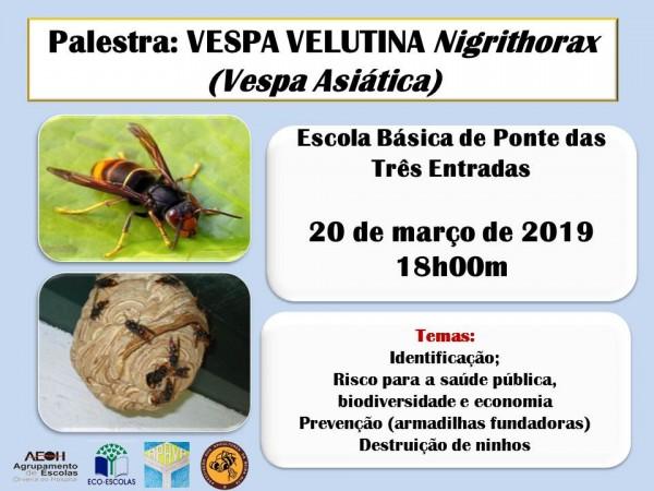 Palestra Vespa Velutina na Escola da Ponte das 3 Entradas